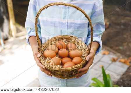 Midsection of asian boy holding basket, collecting eggs from hen house in garden. organic produce and self sufficiency at home.