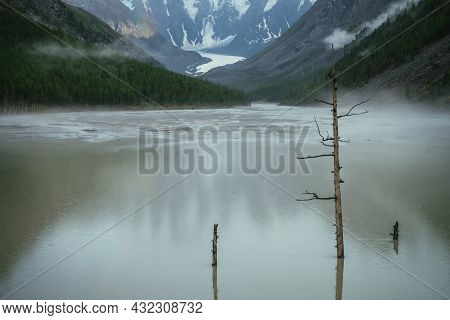 Atmospheric Mountain Landscape With Dry Tree In Green Water Of Mountain Lake And Snowy Mountains In