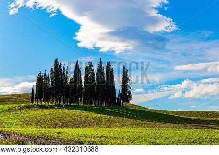 Bizarre cumulus clouds lit by the sunset. Italy. The magical beauty of the province of Tuscany.  Magnificent cypress alley. Sunny day at the beginning of winter.