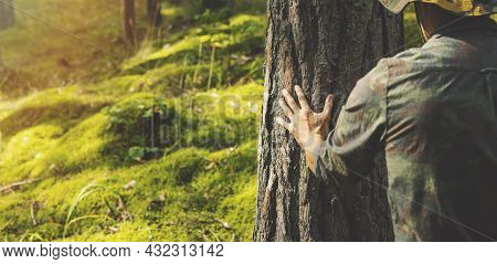 Forester Checking The Pine Tree Trunk. Renewable Resources And Sustainable Development Concept. Copy
