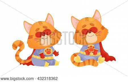 Ginger Whiskered Cat In Red Superhero Cloak Sitting And Smiling Vector Set