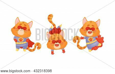 Ginger Whiskered Cat In Red Superhero Cloak Standing And Somersaulting Vector Set