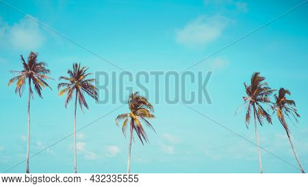 Tropical Palm Tree With Blue Sky And Cloud Abstract Background. Summer Vacation And Nature Travel Ad