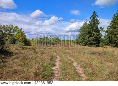 Nice landscape with dirt road in meadow in sunny day