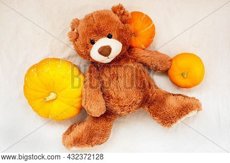 Brown Soft Toy Teddy Bear With Pumpkin On Sackcloth Fabric Texture, Flat Lay, Top View