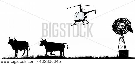 Mustering Time By Helicopter In Outback Australia. Cows Windmill And Helicopter