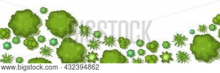 Jungle Forest Top View. Horizontal Seamless Composition. Overgrown Rainforest. Wave Bottom Border. I