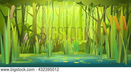 Green Summer Forest Landscape. Swampy Coast With Cattails And Reed. Flat Style. Leaves Of Water Lili