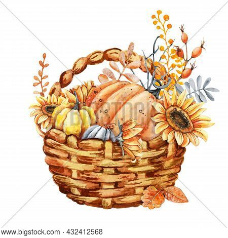Autumn Harvest In A Wicker Basket, Pumpkins And Sunflowers. Thanksgiving And Halloween Design Templa