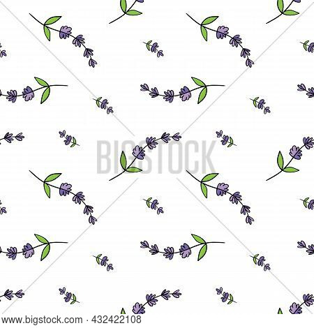 Cute Doodle, Hand Drawn Lavender Flowering Plants Vector Seamless Pattern Background For Nature, Aro