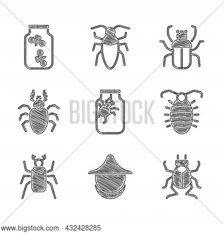 Set Spider In Jar, Beekeeper Hat, Beetle Bug, Larva Insect, Deer, Stink And Fireflies Bugs Icon. Vec