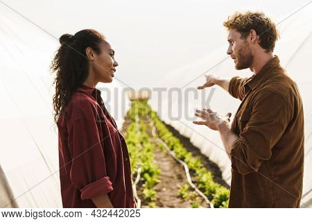 Middle aged multiethnic couple of farmers working in a greenhouse together talking discussing work