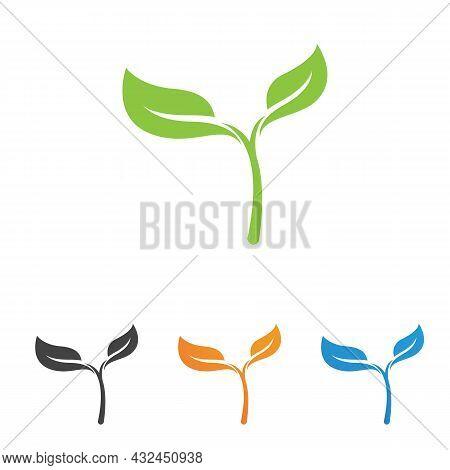 Logos Of Green Tree Leaf Ecology