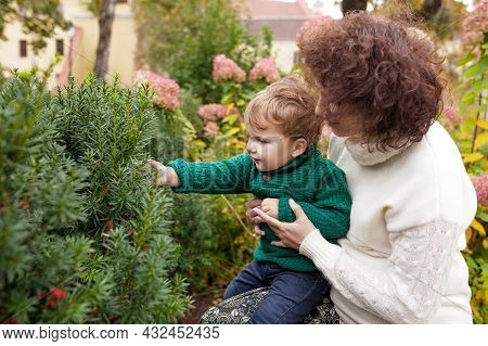 Happy Mother And Her Little Boy. Child Playing With Mother In The Park. Mother And Son Embracing. Ch
