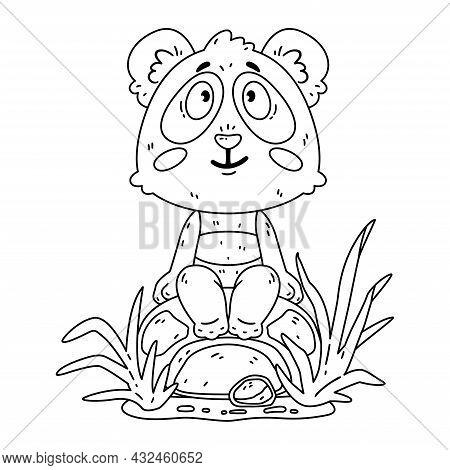 Cute Panda Bear Sitting On The Rock. Kawaii Animal Zoo Vector. Vector Illustration For Coloring Page