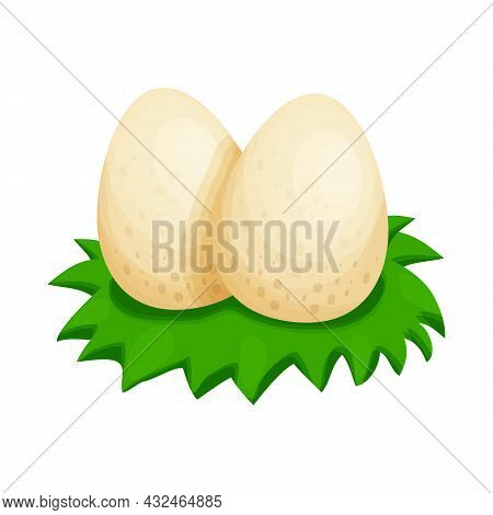 Dinosaurs Nest With Eggs And Grass In Cartoon Style Isolated On White Background. Prehistoric Shell,