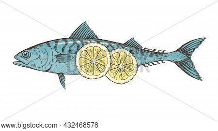 Sea Fish Mackerel With Lemon On A White Background