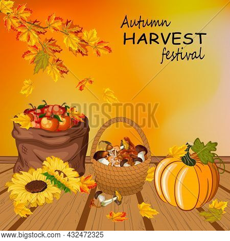 Vector Illustration With Autumn Harvest.mushrooms, Apples And Pumpkin On A Wooden Background With Au