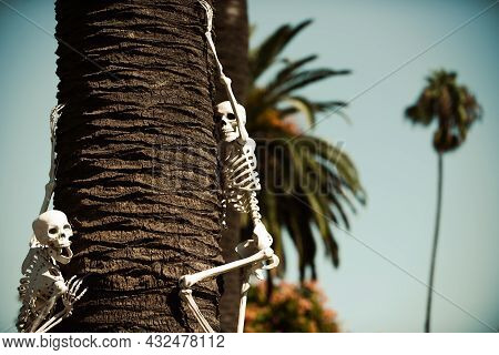 Helloween Skeleton Near House Decor. Halloween Scenery. Terrible Holiday At Home. Halloween In The U
