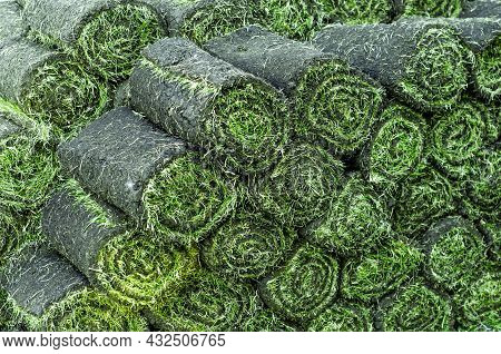 Rolls Of Lawn Grass, Ready For Planting. Products For Landscape Design. Layers Of Soil With Sprouted