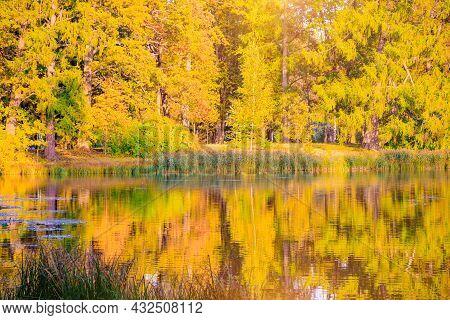 Autumn Park Landscape With A Lake. Autumn. A New Season. Beautiful Landscape. Yellow Trees. Photos F