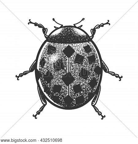 Ladybug With Square Specks Spots Sketch Engraving Vector Illustration. T-shirt Apparel Print Design.