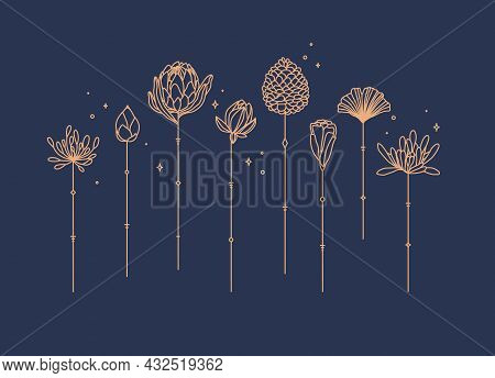 Flowers Long Stem Drawing In Art Deco Style On Blue Background