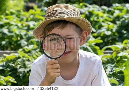 Blurred, Out Of Focus. Adorable Little Child Boy In Straw Hat Look At Green Plant Leaves And Flowers