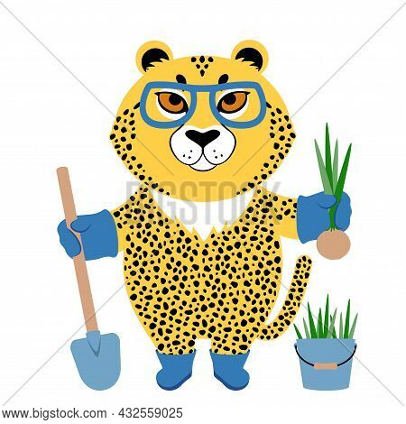 Vector Illustration Of A Cute Cartoon Cheetah In Glasses With Shovel And Onion