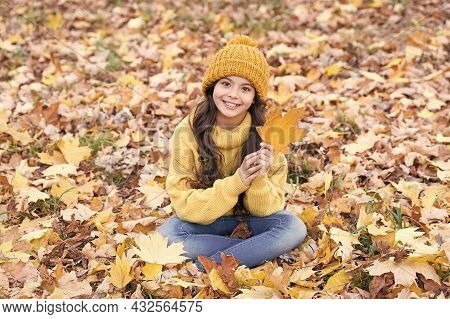 Amazing Leaf. Happy Girl Hold Maple Leaf. Small Girl Smile Sitting On Fall Leaves. Little Child Girl