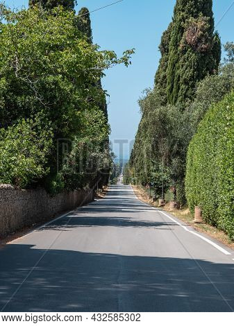 Characteristic Long Road Of The Medieval Village Of Bolgheri In Tuscany Surrounded By Cypresses - It
