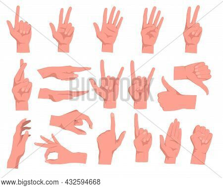 Set Of Hand Gestures Cartoon Vector Illustration. Human Palm With Fingers In Different Positions, Sh
