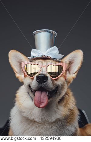 Funny Happy Doggy With Top Hat And Sunglasses