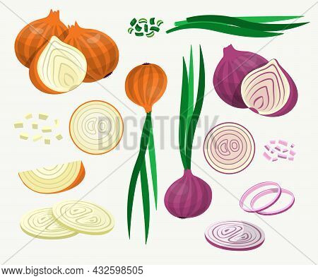Fresh Yellow And Red Onions Vector Illustrations Set. Onions Cut Into Rings And Slices, Whole Ripe V