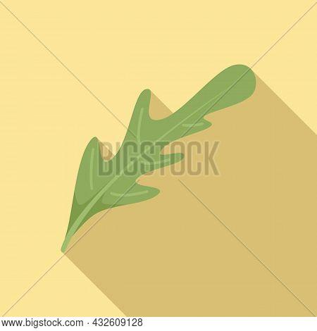 Lettuce Arugula Icon Flat Vector. Rucola Salad. Leaf Plant