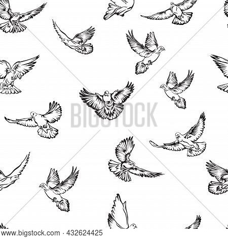 Image Of Flying Doves, Pattern For Design And Decoration, Black And White Linear Image, Dove, Flying