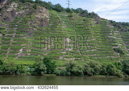 View On Hills With Terraced Vineyards Along Bank Of Mosel River Near   Cochem, Germany