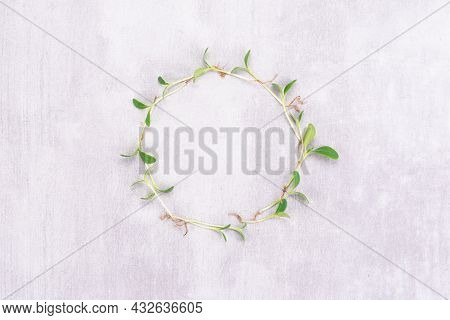 Conceptual Photo Of Microgreens Of Watercress On A White Background In The Form Of A Clock. Microgre