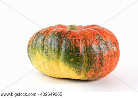 Pumpkin Isolated On White With Shadow And Subtle Reflection. Ripe Ugly Pumpkin, Orange Green Pumpkin