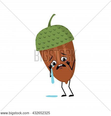 Character Acorn With Crying And Tears Emotion, Sad Face, Depressive Eyes, Arms And Legs. Melancholy
