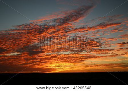 Golden skies, Baja, Mexico