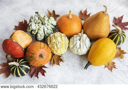 Autumn Composition,  Cozy Fall Season,  Pumpkins And Leaves On Concrete Background. Symbol Of Thanks