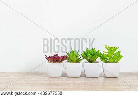 Empty Background Wallpaper Top Table With Green Plant. Copy Space For Products Display Montage.