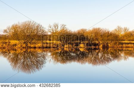Landscape Of Golden Trees And Shrubs In Winter Reflecting On A River, Creating A Mirror Like Reflect