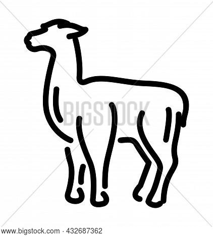 Beautiful Monochrome Linear Vector Illustration With Black Lama Silhouette Isolated On The White Bac