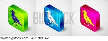 Isometric Bird Seagull Icon Isolated On Grey Background. Square Button. Vector
