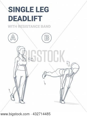 Woman Doing Single Leg Deadlift Home Workout Exercise With Resistance Band Or Rubber Loop Guidance.