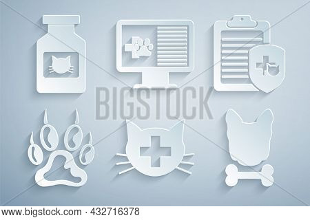 Set Veterinary Clinic, Clinical Record Pet, Paw Print, Dog And Bone, Monitor And Cat Medicine Bottle