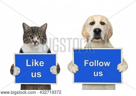 A Dog Labrador And Colored Cat Are Holding Blue Signs T Says Like Us And Follow Us. White Background
