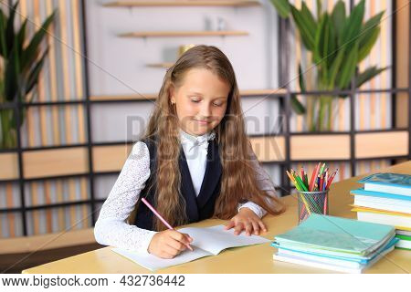 The Schoolgirl Sits Over Notebooks. The Girl Writes In A School Notebook. The Child Is Doing His Hom